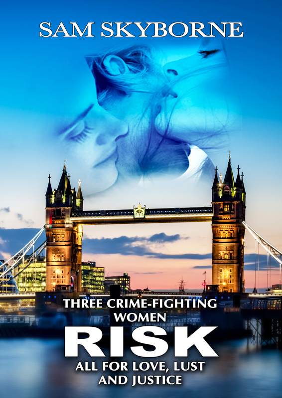 Lesbian Fiction Crime Thriller romance & Coming-out Story book novel - Risk: Three Crime-fighting Women Risk all for Love, Lust & Justice. Toni Mendez
